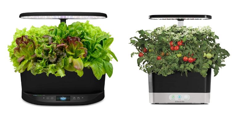 AeroGarden Bounty vs Harvest Hydroponic Garden Design