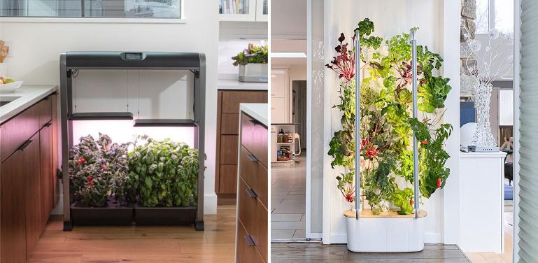 AeroGarden vs Gardyn Indoor Garden Comparison
