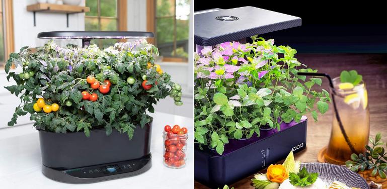 AeroGarden vs iDOO Indoor Garden Comparison